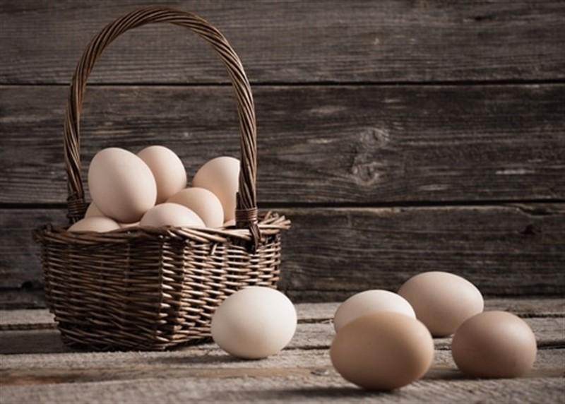 Dont put all your eggs in one basket, aynı sepete tüm yumurtalarını koyma. İngilizce atasözü ve Türkçe karşılığı