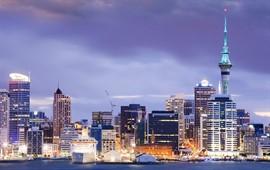 Auckland dil okulları