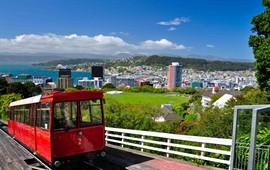 Wellington dil okulları