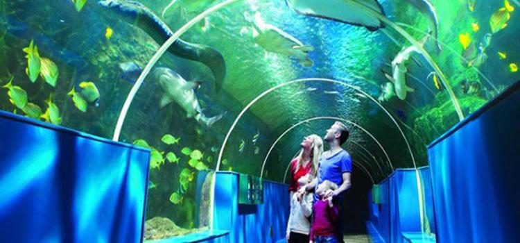 Bournemouth aquarium