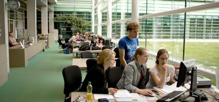 hollanda üniversite hazırlık programları