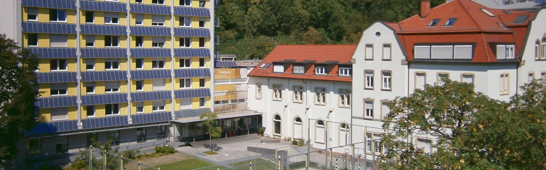 humboldt institut freiburg yaz kampı