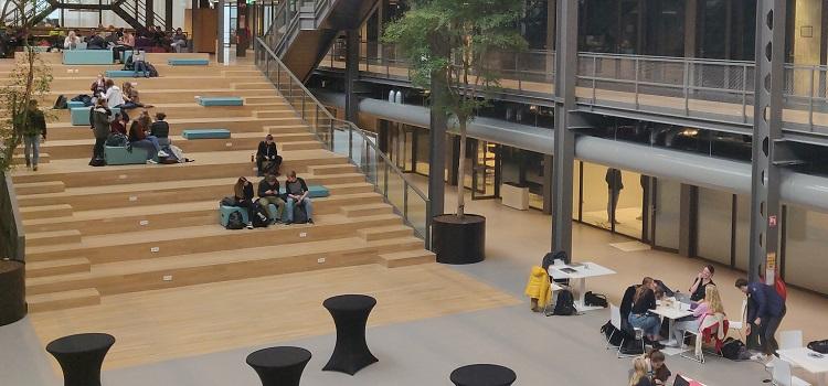 hollanda üniversite eğitimi