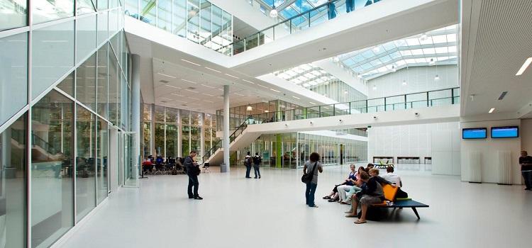 hollanda'da üniversite eğitimi