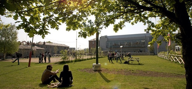 griffith college irlanda üniversite