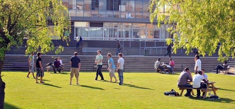 brunel university yaz okulu