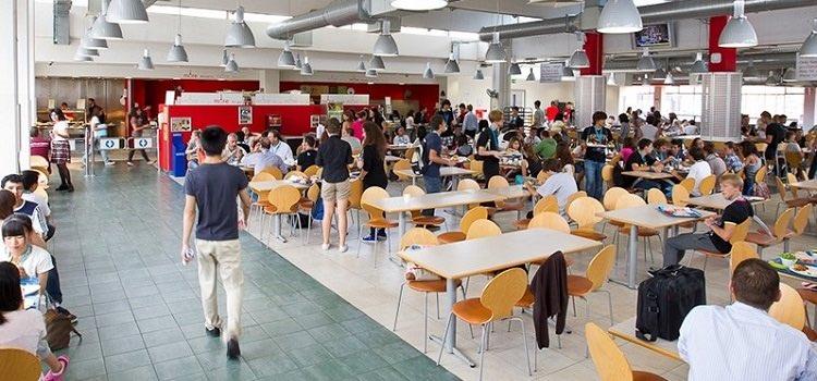 ingiltere yaz okulları