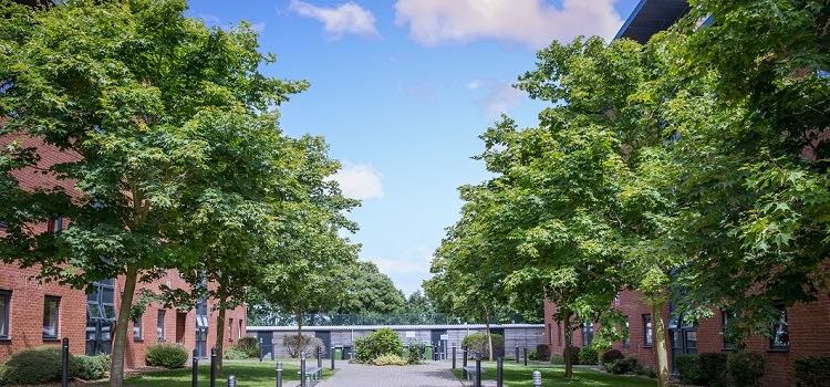 brighton university eastbourne yaz okulu