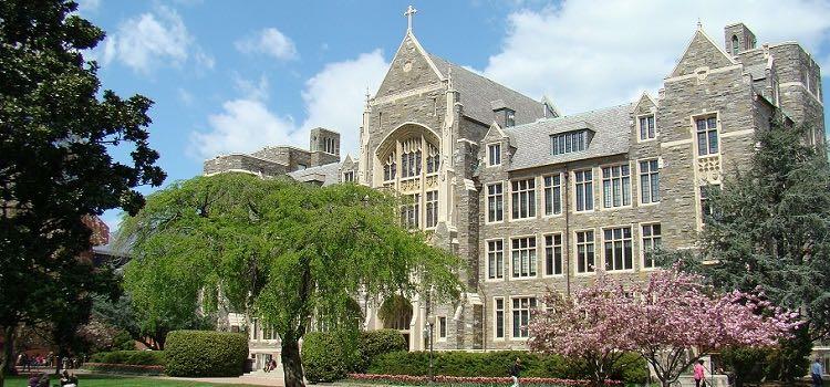 georgetown university yaz okulu