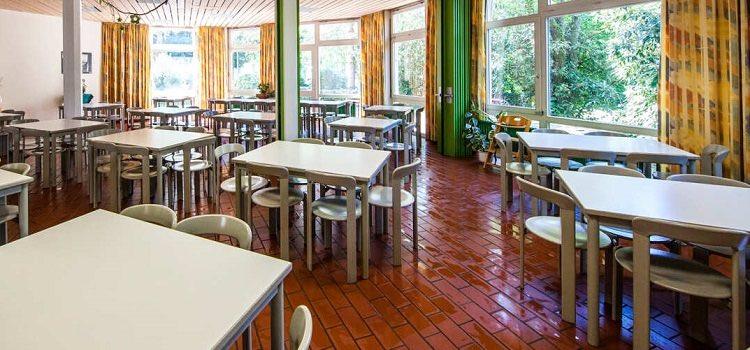 freiburg yaz okulları