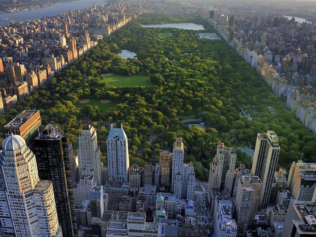 new-york-city-amerika-yurtdisi-egitim-1.jpg