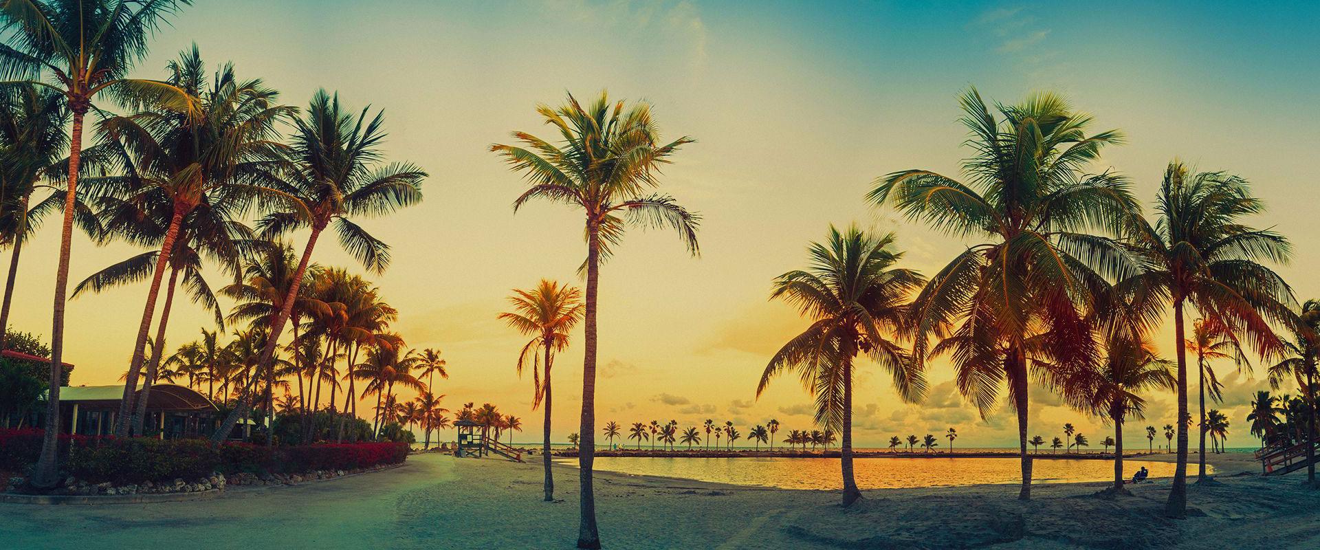 Miami-amerika-yurtdisi-egitim-7.jpg