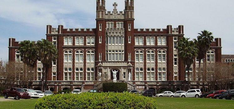 loyola university chicago yaz okulu