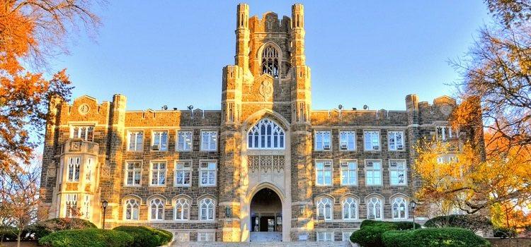 new york fordham university yaz okulu