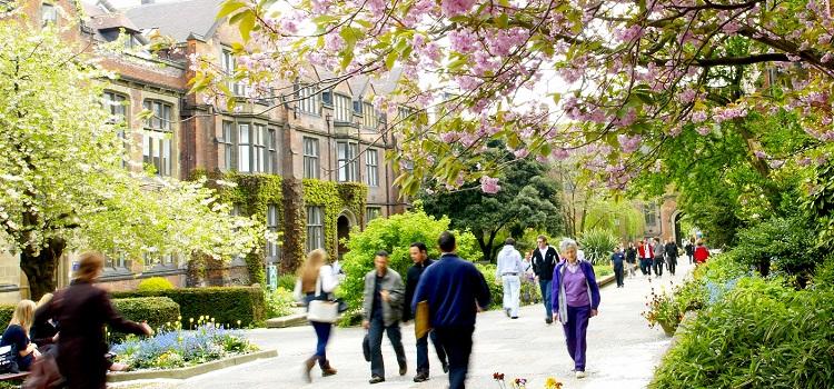 newcastle university ingiltere